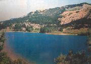 """Lago """"La Selva"""""""